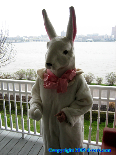 MACY''S Parade Rabbit Costume Original 1930s MINT