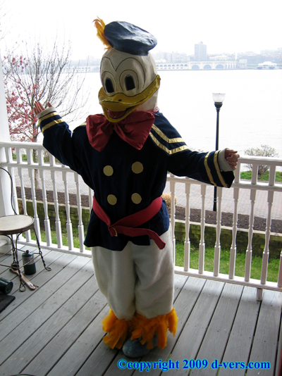 MACY'S Parade Donald Duck Costume 1930s Original
