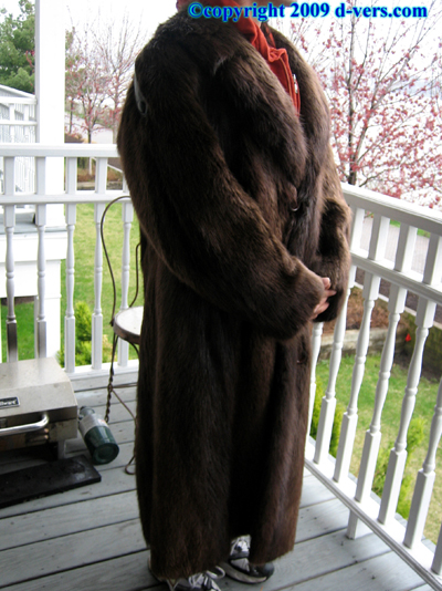 RACCOON Fur Coat Mens 1970 Female Raccoon Antique Vintage