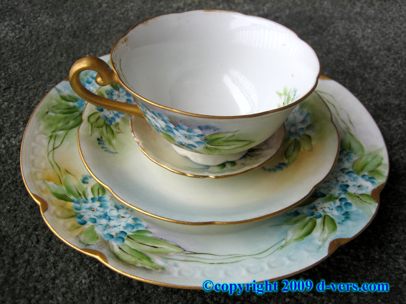 Hand painted cup and saucer set with floral designs