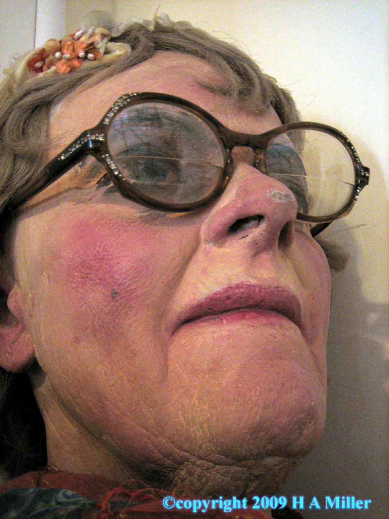 Duane Hanson Test Head Cheek- so lifelike!